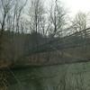 Tortoise on the bridge
